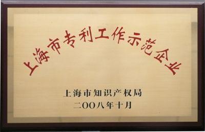 上海市专利工作示范企业